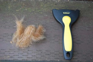 ShedMonster De-shedding Tool Review