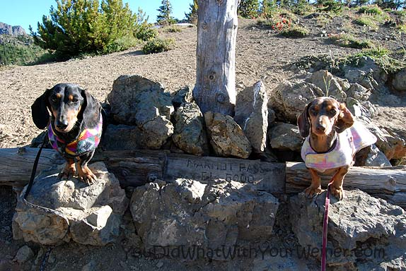 Marmot Pass Elevation Marker