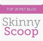 Skinny Scoop top 25