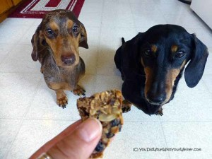 Homemade Energy Bars Both You and Your Dog Can Eat