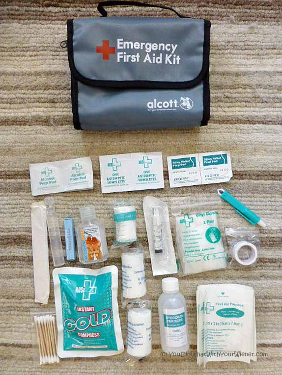 Alcott Fiirst Aid 1