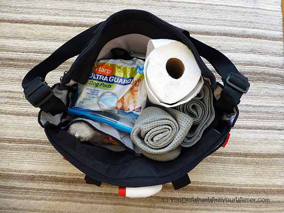 Dog Pas Pack For A Road Trip