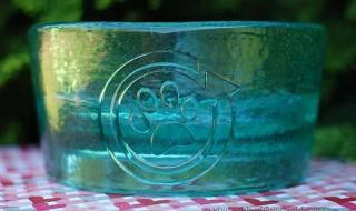 PawNosh Cubby Bowl