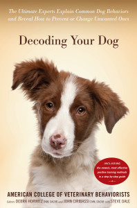 Decoding Dog