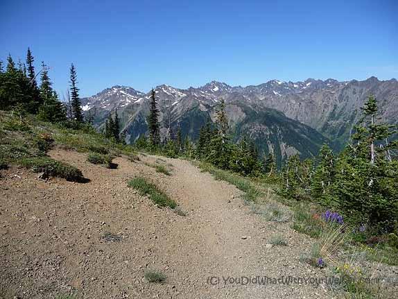 Marmot Pass View 1
