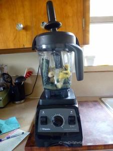 Vitamix Green Smoothie Recipe