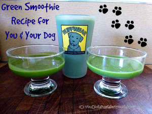 Healthy Green Smoothie Both You and Your Dog Can Eat