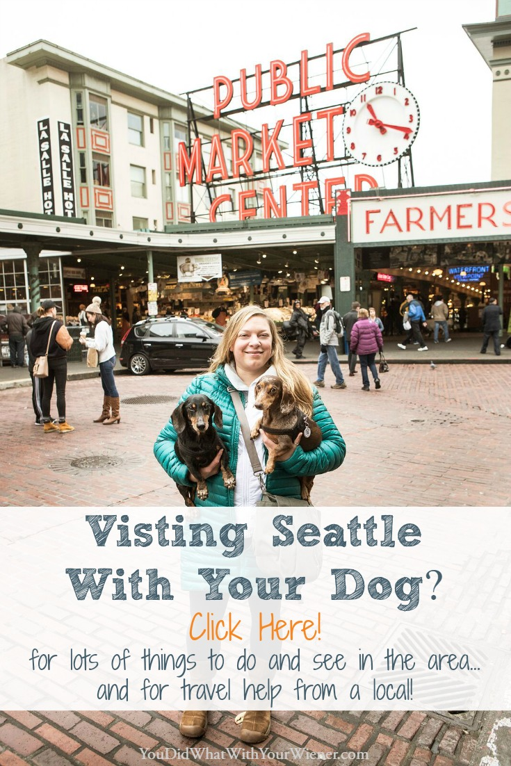 Help for Planning a Trip To Seattle With Your Dog - One of the Most Dog Friendly Cities in the Country!