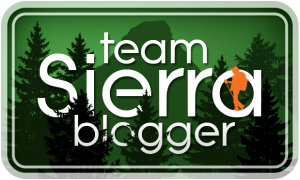Team Sierra big logo
