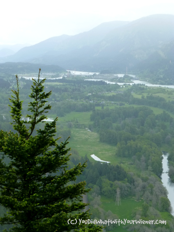 View from Beacon Rock Trail, Columbia Gorge