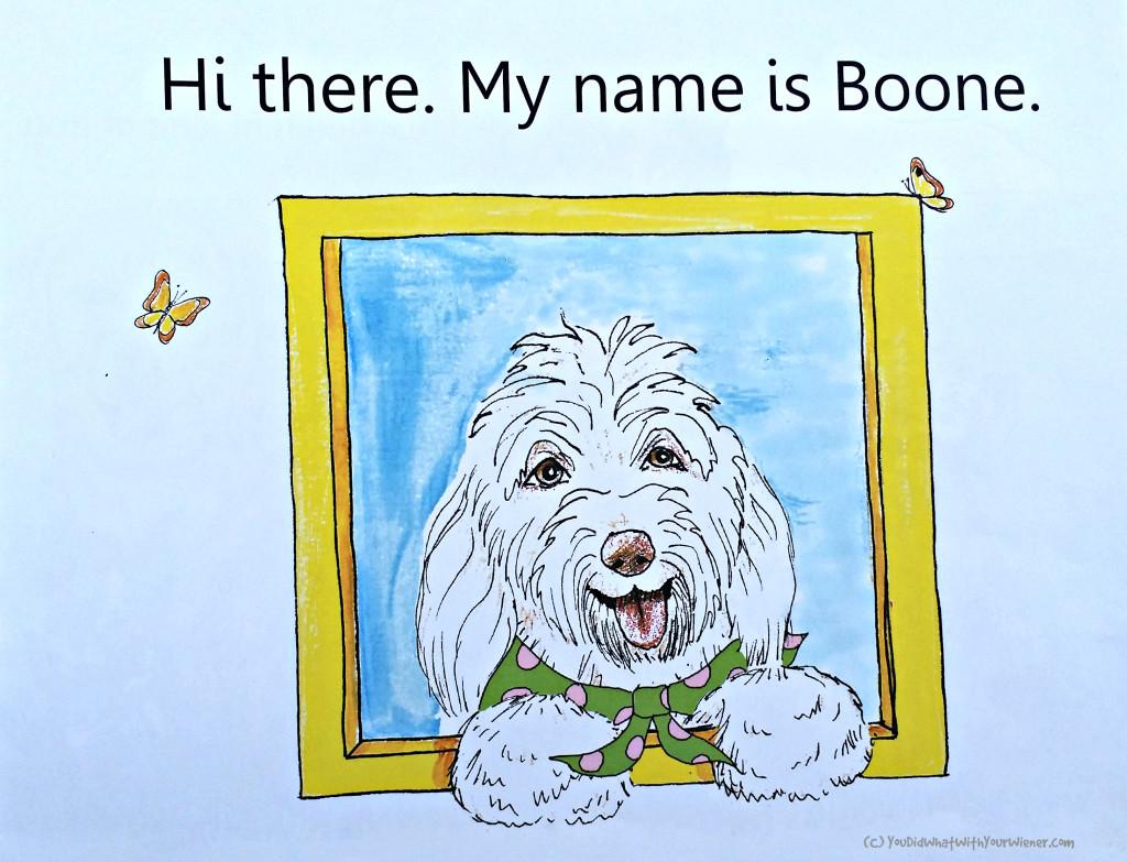 Meet Boone