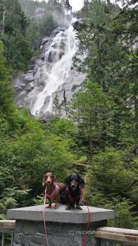 Shannon Falls Squamish British Columbia - dog friendly trail