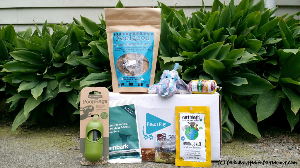 "special edition ""green"" dog subscription box from Paws and Play"