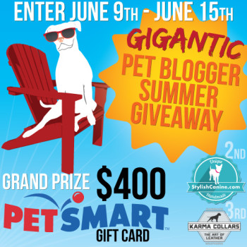 Oh, the Toys You Could Buy! – GIGANTIC #Giveaway for Pets