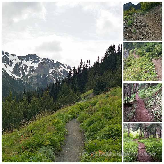 Upper Big Quilcene to Marmot Pass - the trail experience in pictures