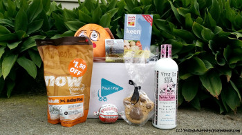Paws and Play subscription dox box