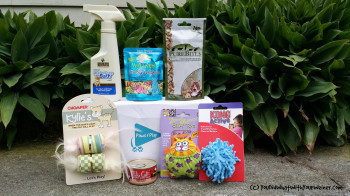 Paws and Play subscription cat box