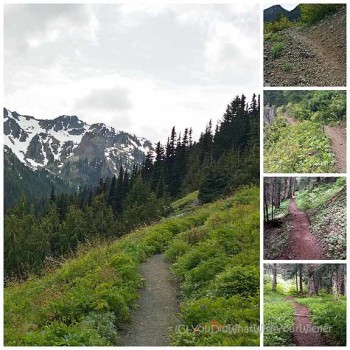 A collage showing the different terrain of the Upper big Quilcene Trail to Marmot Pass