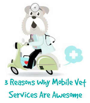 Mobile vet awesome