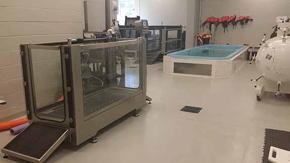 UT Vet School - Underwater Treadmill