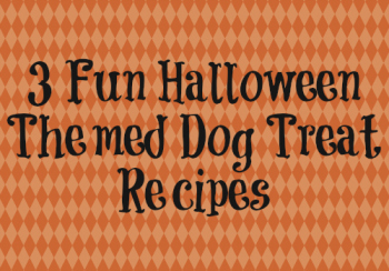 3 Fun Halloween Themed Dog Treat Recipes