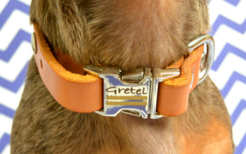 The Beautiful Mimi Green Personalized Leather Dog Collar