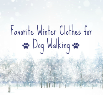 Favorite Winter 2014 Clothes for Dog Walking