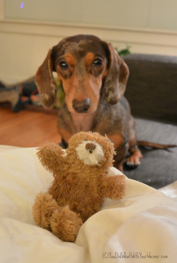 Gretel with Bear Small