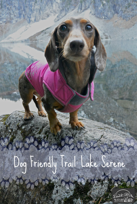 Lake Serene Dog Friendly Trail