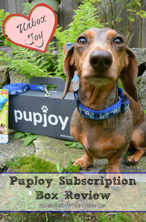 PupJoy Subscription Goody Box Review