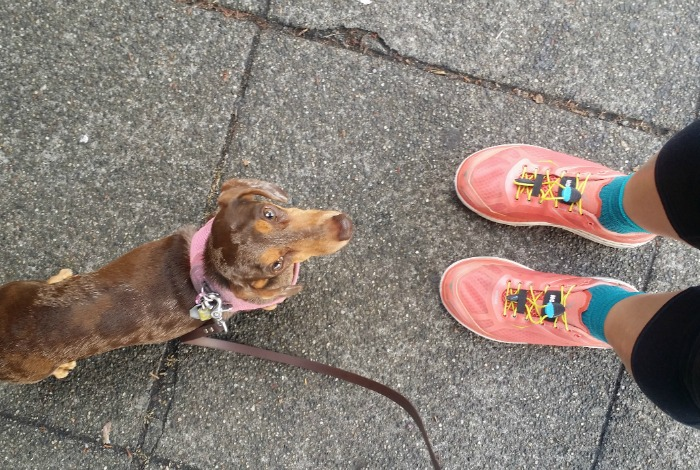 Running with my Dachshund in my Hoka One One shoes