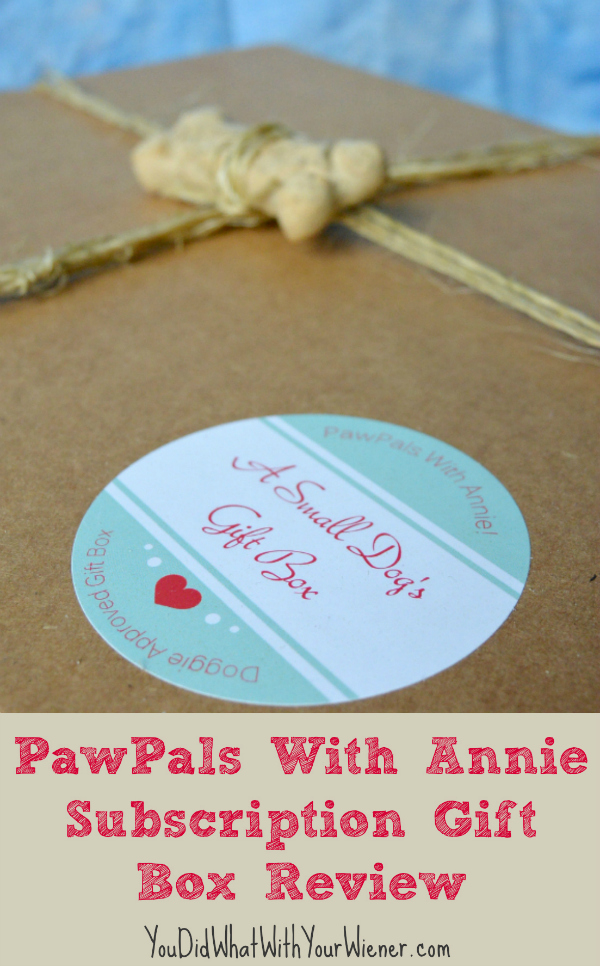 PawPals with Annie Gift Box Review