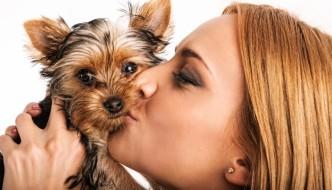 Woman kissing a Yorkie