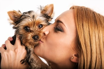 Woman kissing a Yorkie