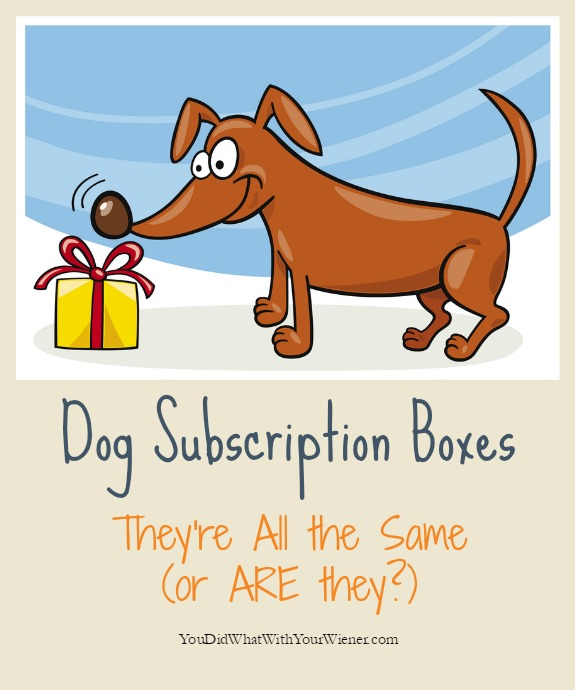Dog Subscription Box Side-by-side Comparison  sc 1 st  You Did What With Your Weiner & monthly dog box dog subscription box cat subscription box Aboutintivar.Com
