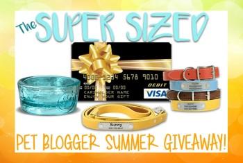 Huge Pet Blogger Summer Giveaway! Win a $400 Visa Gift Card