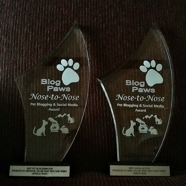 Nose-to-Nose Awards for Best Dog Blog and Best Design