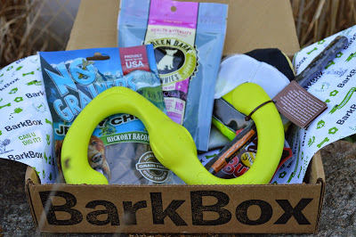 Barkbox dog subscription box