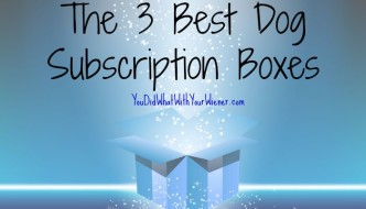 The 3 Best Dog Subscription Boxes