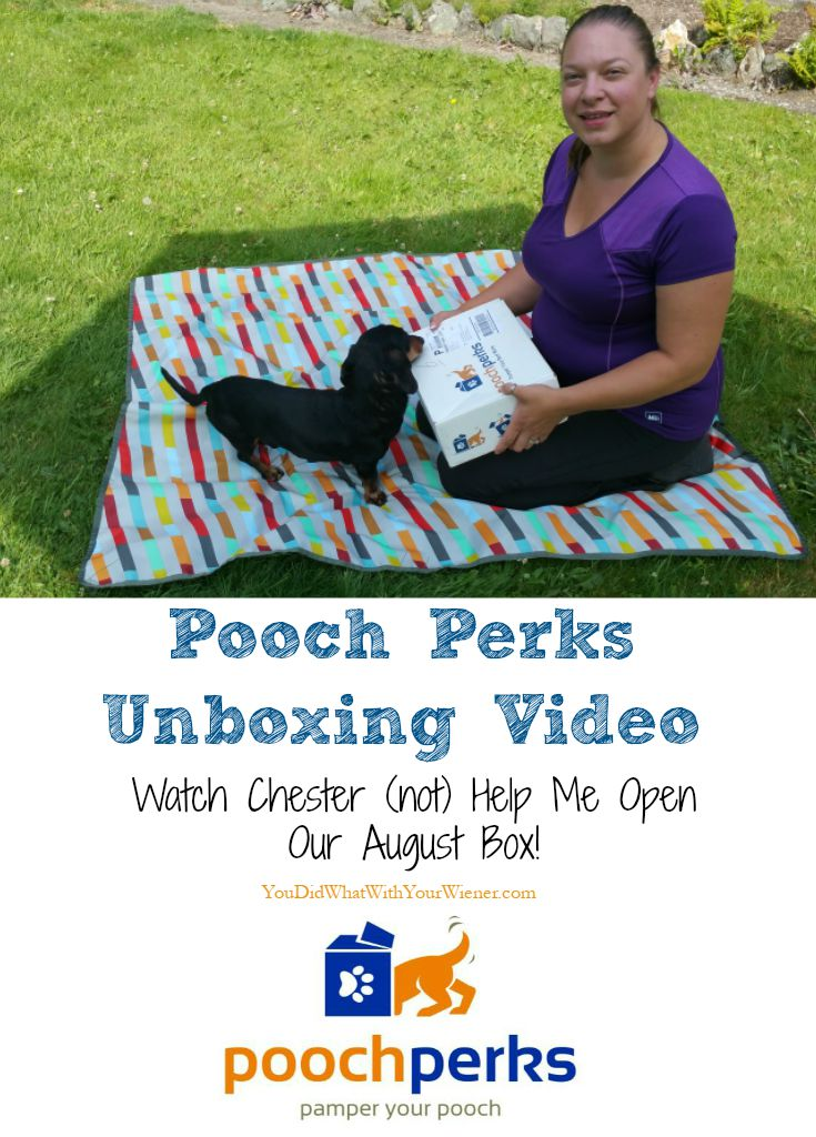 Watch Our Pooch Perks Unboxing Video