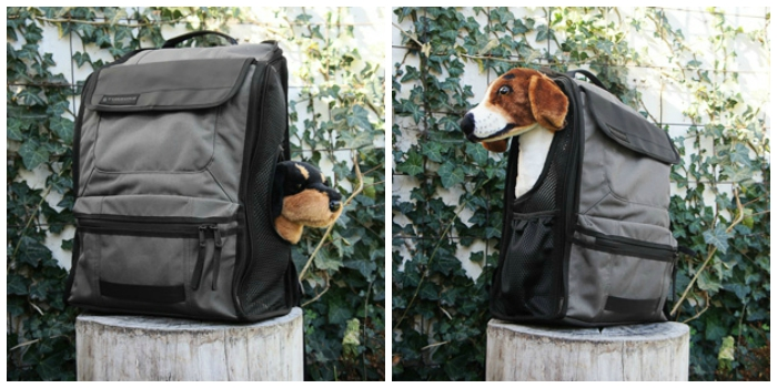 Backpacks for Carrying Dachshunds