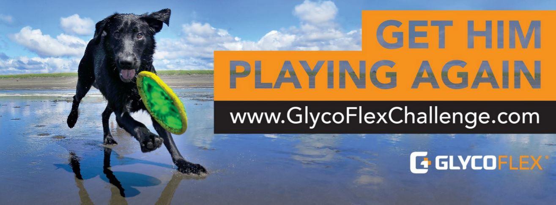 GlycoFlex Challenge Banner