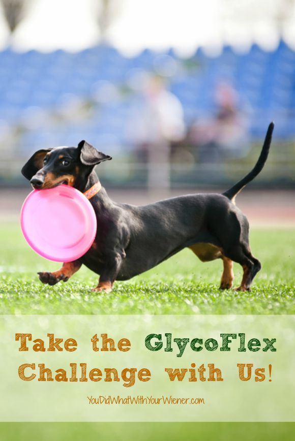 The GlycoFlex Challenge is easy and FREE