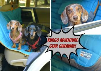 Kurgo Adventure Gear Giveaway!