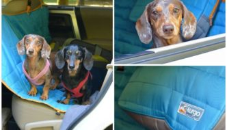 Kurgo Loft Dog Hammock to protect your back seat