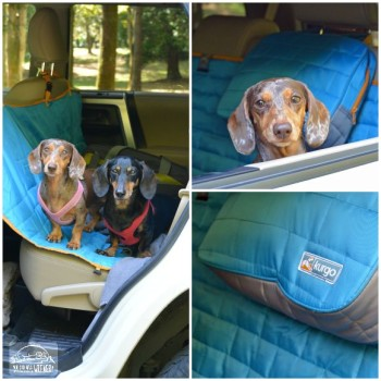 Kurgo Adventure Gear: Loft Hammock Car Seat Cover