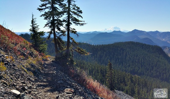 View of Mt. Rainier from the Kendall Katwalk Trail