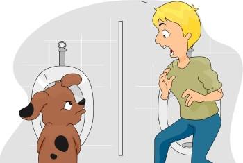Dog Peeing