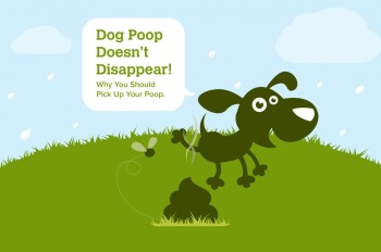 To Scoop or Not Scoop the Poop? That is the Question.