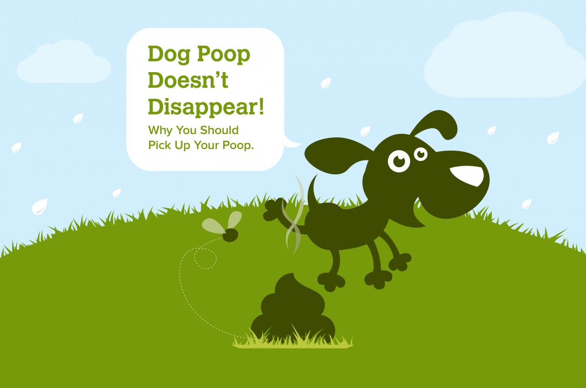 Do You Have To Pick Up Dog Poop
